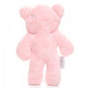 Snuggle Teddy Pink